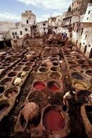 Tannery Vats in the Medina, Fes, Morocco by John & Lisa Merrill - various sizes