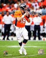 Peyton Manning 2014 Running Fine Art Print