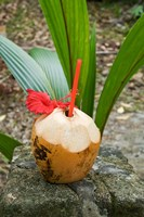 Tropical cocktail drink on Fregate Island, Seychelles by Alison Wright - various sizes