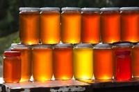 Tunisia, Nefza, local honey, agriculture by Walter Bibikow - various sizes, FulcrumGallery.com brand