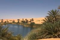 Umm El Ma Lake, Erg Awbari, Sahara Desert, Fezzan, Libya Fine Art Print