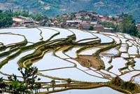 Village Beside Flooded Jiayin Terraces, Honghe County, Yunnan, China by Charles Crust - various sizes, FulcrumGallery.com brand