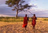Two Maasai Morans Walking with Spears at Sunset, Amboseli National Park, Kenya Fine Art Print