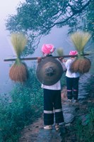 Zhuang Girls Carrying Hay, China Fine Art Print