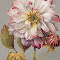Classically Beautiful II by Lisa Audit - various sizes
