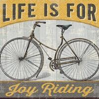Joy Ride I by Pela Studio - various sizes