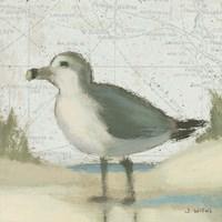 Beach Bird II by James Wiens - various sizes