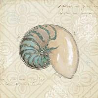 Beach Treasures III by Emily Adams - various sizes