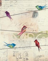 Birds on a Wire no Border Fine Art Print