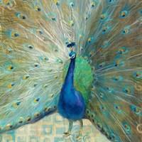 Blue Peacock on Gold Fine Art Print