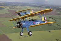 Dual Boeing Stearman Model 75 in flight Fine Art Print