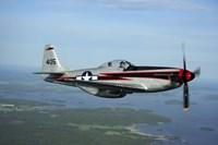 North American P-51 Cavalier Mustang Fine Art Print