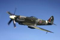 Supermarine Spitfire Mk XVIII fighter warbird Fine Art Print