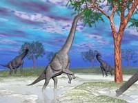 Brachiosaurus dinosaurs grazing on trees by Elena Duvernay - various sizes