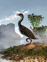 Hesperornis on the shore of a lake looking around Fine Art Print