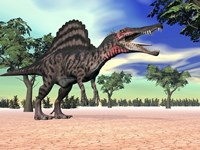 Spinosaurus standing in the desert with trees by Elena Duvernay - various sizes