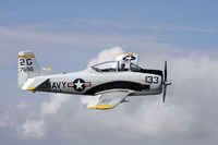 T-28 Trojan trainer warbird in US Navy colors by Daniel Karlsson - various sizes
