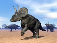 Three Nedoceratops in the desert by daylight by Elena Duvernay - various sizes