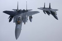 Two  F-15E Strike Eagle of the US Air Force Fine Art Print