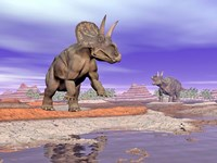 Two Nedoceratops next to water in a colorful rocky landscape by Elena Duvernay - various sizes