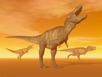Tyrannosaurus Rex dinosaurs in an orange foggy desert by sunset by Elena Duvernay - various sizes