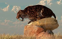 A Smilodon sits on a rock surrounded by golden fall fields by Daniel Eskridge - various sizes
