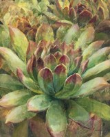 Nature Delight III Fine Art Print