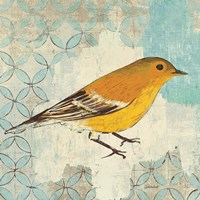 Pine Warbler by Kathrine Lovell - various sizes