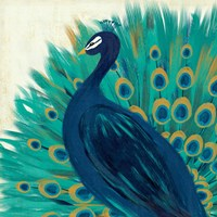 Proud as a Peacock II by Veronique Charron - various sizes, FulcrumGallery.com brand