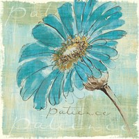 Spa Daisies II by Chris Paschke - various sizes