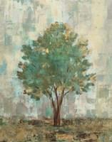 Verdi Trees II Framed Print