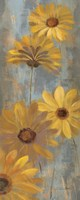Yellow Gerberas II by Silvia Vassileva - various sizes