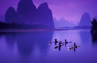 Cormorant by the Li River China