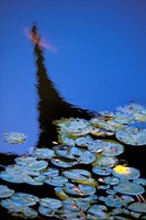 Lily Pond and Temple Reflection in Blue, China by Walter Bibikow - various sizes