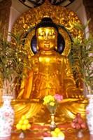 Golden Buddha in Sha Tin Cemetery, Hong Kong, China Fine Art Print