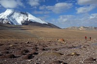 Towards The Summit Of Kongmaru La, Markha Valley, Ladakh, India Fine Art Print
