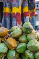 Pile of Coconuts, Bangalore, India Fine Art Print