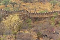 Ancient wall around old fort above Udaipur, India by Adam Jones - various sizes