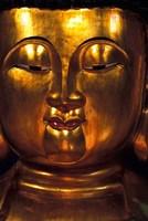 Golden Temple Buddha at Cemetary, Hong Kong Fine Art Print