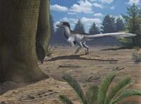 A deinonychosaur leaves tracks across a Cretaceous China landscape Fine Art Print