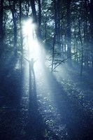 Silhouette of a man standing in the misty rays of a dark forest, Denmark Fine Art Print