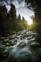 Small river flowing over large stones at sunset, Pirin National Park, Bulgaria by Evgeny Kuklev - various sizes - $47.49