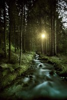 Sunset over Small Stream, Pirin National Park, Bulgaria Fine Art Print