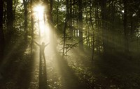 Silhouette of a man standing in the sunrays of a dark, misty forest, Denmark Fine Art Print