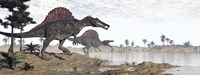 Two Spinosaurus dinosaurs walking to the water in a desert landscape Fine Art Print