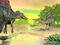 Confrontation between two Spinosaurus dinosaurs by Elena Duvernay - various sizes