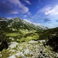 A green valley through Pirin Mountains, Pirin National Park, Bulgaria Fine Art Print