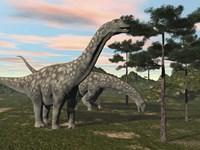 Argentinosaurus dinosaur grazing on treetops by Elena Duvernay - various sizes
