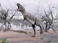 Aucasaurus dinosaur roaring in the desert by Elena Duvernay - various sizes