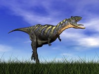 Aucasaurus dinosaur running in the grass by Elena Duvernay - various sizes